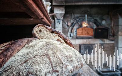 Vis ma vie de paysan boulanger : des formations aux Herbes Folles